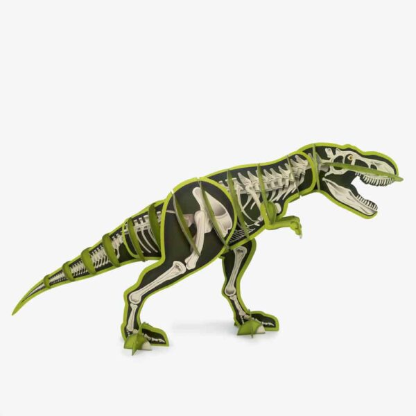 Build A Giant Dinosaur Skeleton