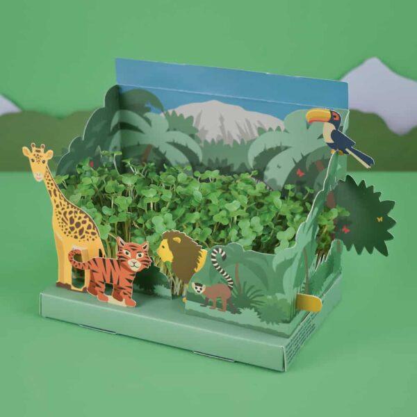 jungle garden inside