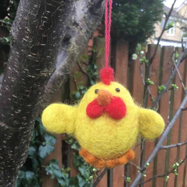 yellow chattering chick