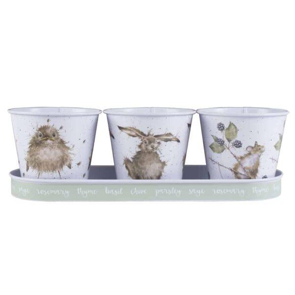 floral herb pots