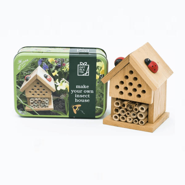 build an insect house