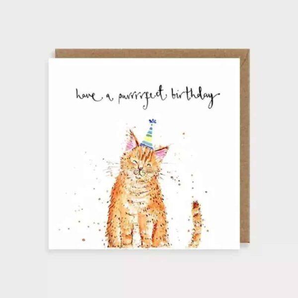 purrrfect birthday