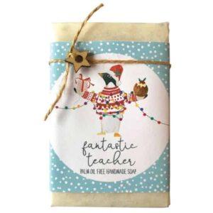 fantastic teacher soap