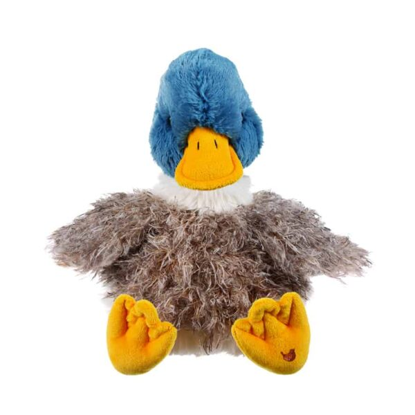 webster duck