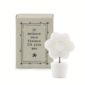 matchbox flower